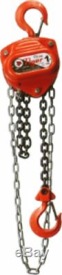 1 Ton Capacity Endless Chain Hoist