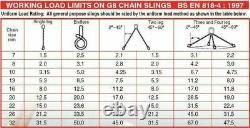 Lifting Chain 6 Metre x 4Leg 10mm 20ft CONTAINER CHAIN + 4 x 6.5ton Bow Shackles