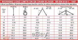 Lifting Chain Sling 2m x 2 Leg 10mm 4.2ton with Shortners Handy Straps